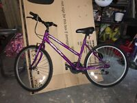 Ladies Mardi Gras cycle 18 gears. Used once so very good condition.