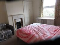 big double room in marvelous house in Wimbledon