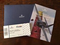 Red Bull Air Race 2016 Ascot