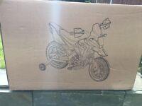 Electric motorbike ride on (green)