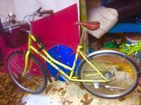 Ladies bicycle by Dawes. Like new. Basket & Bell