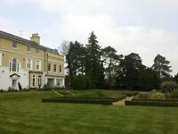 RakeItOrLeafIt Garden Clearance Garden Maintenance £12.50 p/h per person Fully Insured gardeners