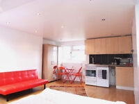 SHORT TERM LET ONLY ( STUDIO APARTMENT SELF CONTAINED ) OSIDGE LANE, SOUTHGATE N14