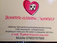 Domestic Cleaner / Homehelp