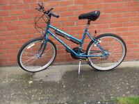 Ladies/girl's bike with gel saddle and suspension seat pillar
