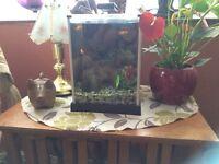 Small cube fish tank