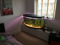 250l juvel fish tank for sale or swap