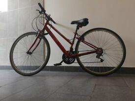 Apollo red bike - new wheels, break pads + saddle