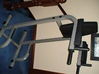 Body-Solid 'Vertical Knee Raise and Dip' Exercise machine chair