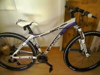 Whistle tulukai 1465D womens mountain bike ( not used much)