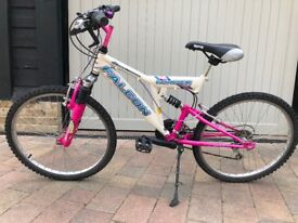 Child's Bicycle, Pink, 19""
