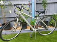 Ladies correla bike