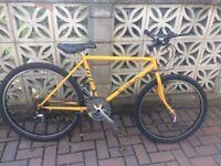 Shogun Trail Breaker II Mountain Bike (used) - 22 inch, 16 gears, good bike for teenagers