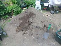Bags of good earth - topsoil