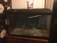 Large fish tank and lots of accessories.