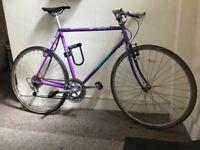 Vintage Purple Free Spirit Wyoming Road Bike