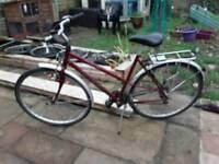 Lady's Raleigh pioneer hybrid bike