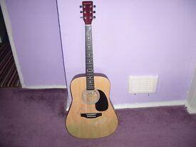 Guitar Eastwood steel strings