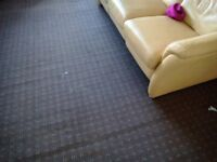 Free second hand carpet o r used 4 metre square and 3meter square