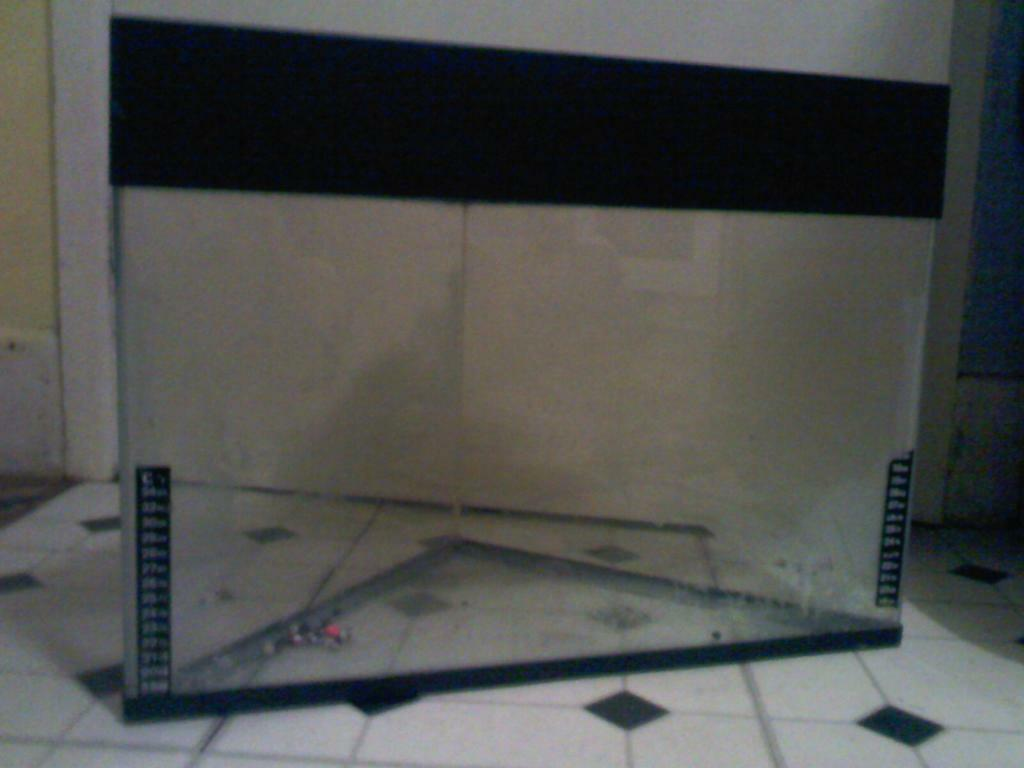 Triangle+Fish+Tank FOR SALE CORNER (TRIANGLE SHAPE) FISH TANK ...