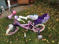 Girl's purple princesses bike