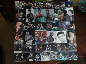 30' x 30' canvas featuring boxers boxing