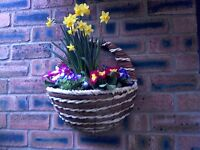 Beautiful Spring Flowers Wall or Fence Baskets/Garden/Patio.