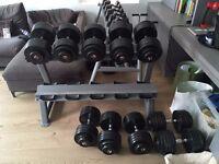 Dumbbells and a rack - 40kg, 42.5kg, 45kg, 47.5kg and 50kg. Weight, gym fitness