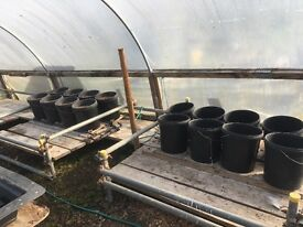 60 flood and drain buckets, pipes etc and various hydroponic equipment. Much of it unused