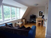 Small, sunny top floor studio flat with views of Leigh Woods, but with traffic noise. BS8 4NT