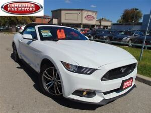 2015 Ford Mustang GT 5.0L LEATHER-CAM-CLEAN CARPROOF