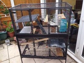 Chinchilla Cage for Sale £50
