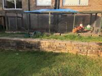 Large chicken run, coop, 4 lovely chickens and extras