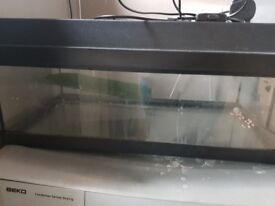 Turtle/fish tank with lid