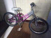 "Girls Raleigh mountain bike 20"" (approx age 7-10 years)"