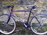 Diamond Back mountain bike - light frame