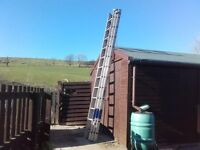 YOUNGMAN Trade 200 3 Section Ladder