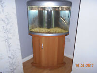 AQUA ONE UFO 550 CORNER FISH TANK AND BEECH WOODEN STAND