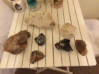 Sea rocks and stones!