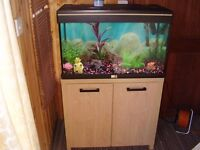 fish tank 2 foot 6 with stand
