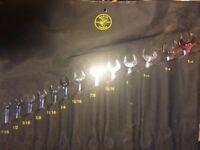 Full set AF spanners
