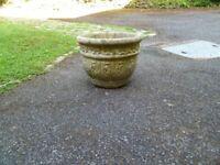 Concrete Planter Pot