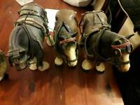 A range of shire horse models