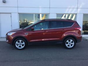 2014 Ford Escape SE Local One Owner Fully Equipped!! Edmonton Edmonton Area image 3