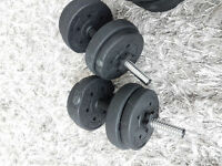 Set of Dumbells - 2 bars and weights plates
