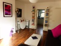stunning two bedroom flat in balham, renovated throughout