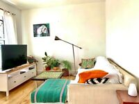 A Spacious and 1 double Bedroom Flat for rent in Peckham NEAR BY Peckham Ray Station