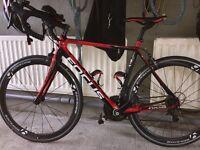 Focus Kayo full Caron road bike/push bike/racing bike