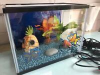 Fish tank, filter, heater, plants, accessories
