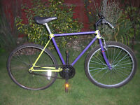 COVENTRY EAGLE SINGLE SPEED MTB ONE OF MANY QUALITY BICYCLES FOR SALE